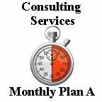 Monthly Consulting Services Plan A (30-Minute Sessions)